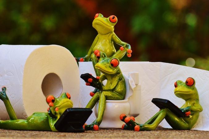 frog-1037257_1280 cco